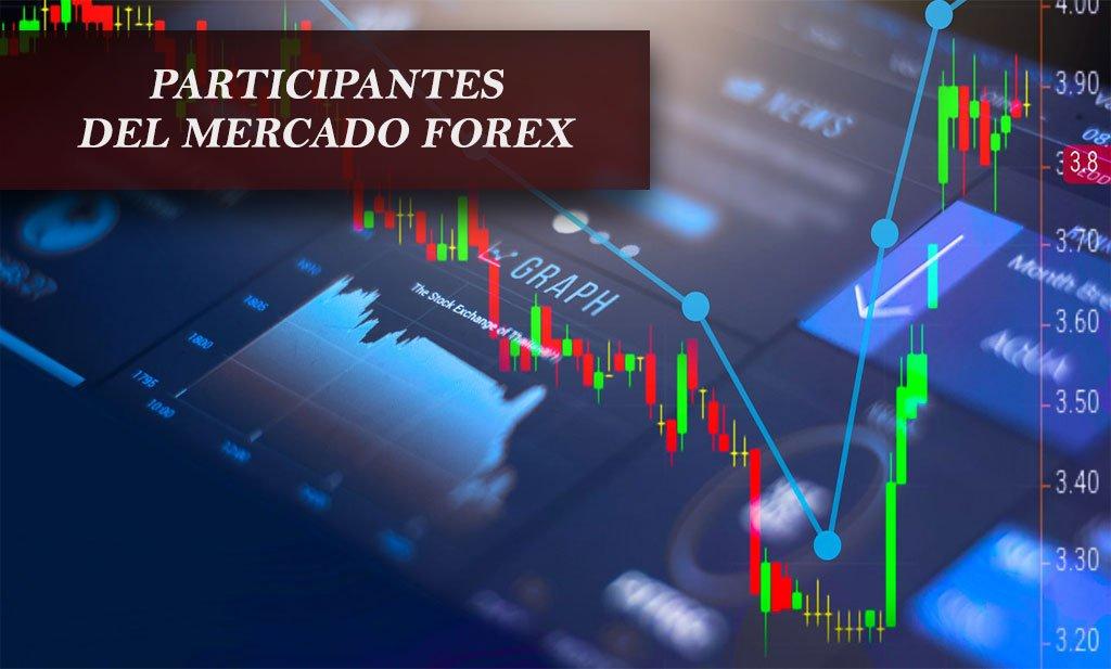 Participantes del mercado Forex | Estafas Forex participantes del mercado forex Participantes del mercado Forex | Estafas Forex participantes